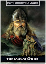 The Sons Of Odin A Heroic Analysis Of The Volsunga Saga
